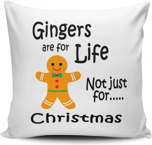 All I Want For Christmas Is You Festive Checklist Novelty Cushion Cover (4)